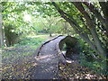 TQ2063 : Packhorse bridge over the Hogsmill River by Marathon
