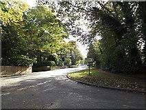 TM3863 : B1121 North Entrance, Saxmundham by Geographer