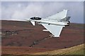 NT2017 : A Eurofighter Typhoon over Paper Hill by Walter Baxter