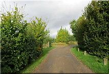 TR2857 : Access Lane from Poulton Farm by Chris Heaton