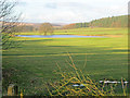 SK2770 : Meadows and pond near Swiss Lake by Trevor Rickard