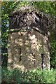 NT3267 : Old water tower, Dalkeith Country Park by Jim Barton