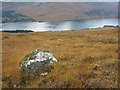 NN0793 : Mountain slopes on north side of Loch Arkaig by Trevor Littlewood