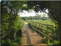 TG2105 : A footbridge over a ditch on Marston Marsh by Rod Allday