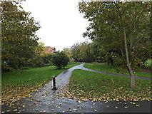TM3863 : Fromus Walk, Saxmundham by Geographer