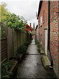 TR2258 : Alleyway in Ickham by Chris Heaton