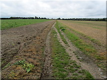 TR2157 : Bridleway leading to the A257 by Chris Heaton