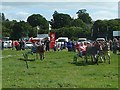 SJ0309 : Donkey Derby at Llanfair Show by Penny Mayes
