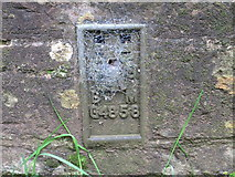 SS6644 : Ordnance Survey Flush Bracket G4858 by Peter Wood