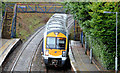 J4180 : Train, Cultra station by Albert Bridge