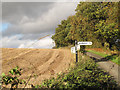 TQ6060 : Signpost on Tumblefield Road by Stephen Craven
