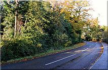 J4668 : The Ballydrain Road, Comber (2) by Albert Bridge