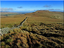 SE0076 : View North East towards Little Whernside by Chris Heaton