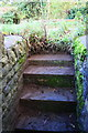 SP5624 : Steps from stream to Bucknell Road near Hawkwell Farm by Roger Templeman