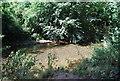 TQ4872 : River Cray by N Chadwick