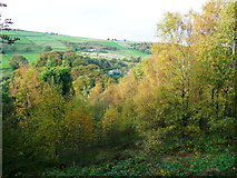 SE0023 : View from Hebden Royd FP115 by Humphrey Bolton