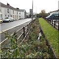 SS7397 : Weed-choked drainage channel, Drummau Road, Skewen by Jaggery