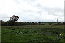 TM3669 : Looking towards Pump House Lane by Geographer
