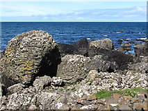 C9444 : Weathered boulders west of the Giant's Causeway by Eric Jones