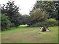 SP2865 : Tree stump, Priory Park, Warwick by Robin Stott
