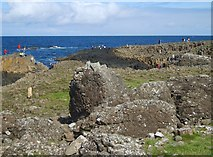 C9444 : The Middle Causeway and the Giant's Causeway from the road by Eric Jones