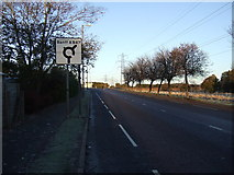NJ8813 : Riverview Drive approaching roundabout by JThomas