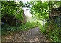 SO8356 : Derelict farm buildings by Mat Fascione