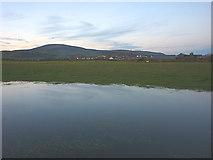 SD1779 : Flooded field by Hodbarrow by Karl and Ali