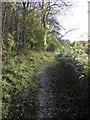 TL0428 : Path towards Sundon Hills Country Park by Philip Jeffrey