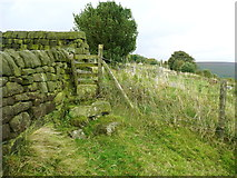 SE0023 : Stile on Hebden Royd FP106 approaching New Lane by Humphrey Bolton