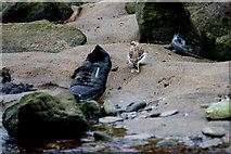 HP6516 : Snow Bunting (Plectrophenax nivalis) and rubbish in the Burn of Skaw  by Mike Pennington