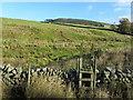 SD7048 : Footpath leading towards Blue Gates by Chris Heaton