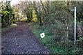 TL0432 : Bridleway to Mill Farm by Philip Jeffrey