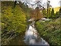 SJ7983 : River Bollin, Downstream from Mill Lane by David Dixon
