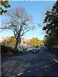 SX9292 : Clifton Road, Exeter by David Smith