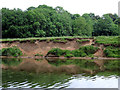 SO8164 : River erosion south-east of Shrawley, Worcestershire by Roger  Kidd