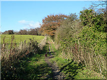 SU6022 : South Downs Way by Robin Webster
