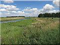 TL6986 : Little Ouse River by Hugh Venables