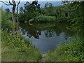 SO8166 : Fishing platform along the River Severn by Mat Fascione