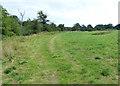 SO8166 : Heading north along the Severn Way Footpath by Mat Fascione