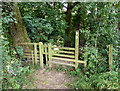 SO8166 : Stile along the Severn Way Footpath by Mat Fascione