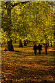 TQ2979 : Walking in Green Park by Jim Osley