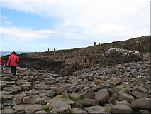 C9444 : The Giant's Causeway from the Middle Causeway by Eric Jones