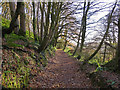 SN1416 : Bridleway near Llanddewi Velfrey church by Dylan Moore