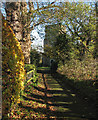 TL3664 : Lolworth: church path and All Saints' tower by John Sutton