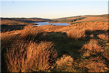 NR7027 : Skeroblin Cruach summit by Colin Kinnear