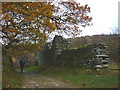 NY3705 : Ruin beside Sweden Bridge Lane by Karl and Ali