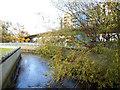 TQ3776 : River Ravensbourne above Deptford Bridge by Stephen Craven