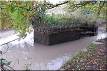 SX8672 : Entrance to the Stover Canal Basin (disused) by jeff collins