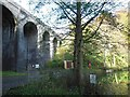 ST7661 : Tucking Mill viaduct by Virginia Knight
